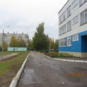 IMG-6709