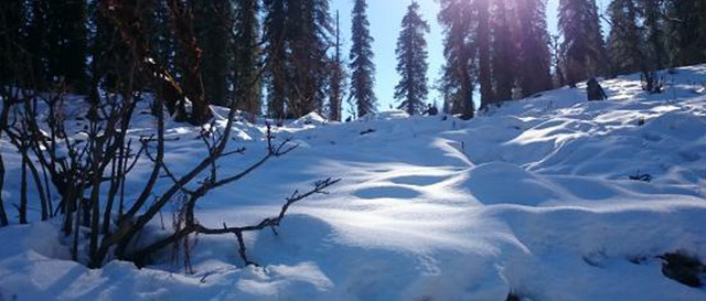 govind-nationalpark-snow-view