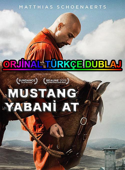 Mustang: Yabani At | The Mustang | 2019 | BDRip | XviD | Türkçe Dublaj | m720p - m1080p | BluRay | Dual | TR-EN | Tek Link