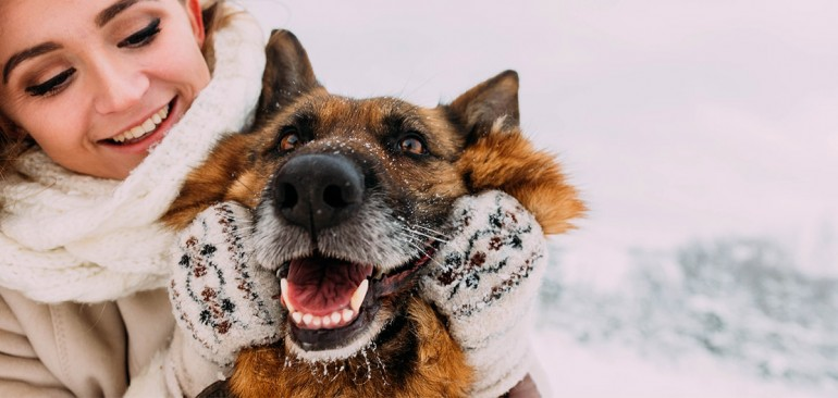 PREVENT COLD IN DOGS