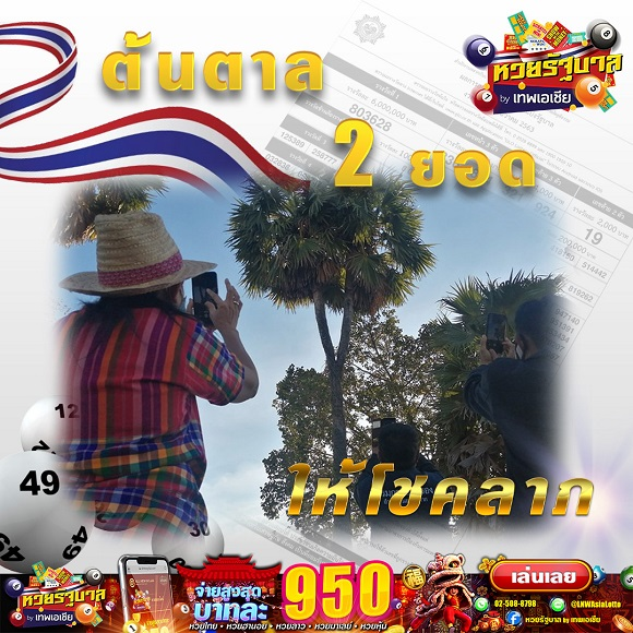 [Image: Lotto-PP2018003-2-3.jpg]