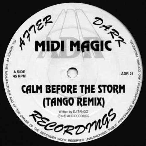 Download Midi Magic - Calm Before The Storm / Fantasia (Remixes) mp3