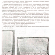 119-lpp