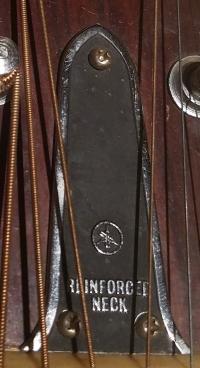 Truss Rod Cover Reinforced Neck.jpg