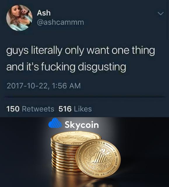 skycoin-meme