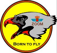 insignia-zoom-escuadron111.png