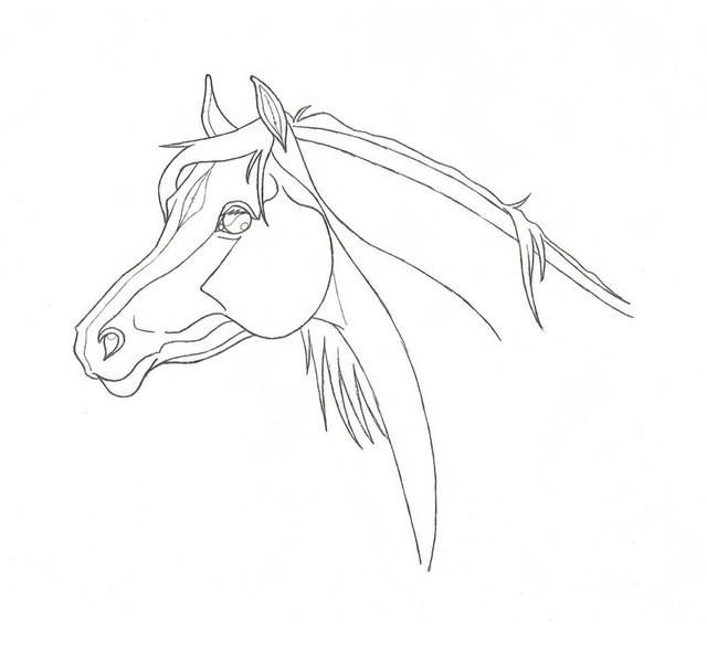 Arabianhevosen pää (1€).jpg