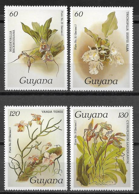 O Guyana 1381