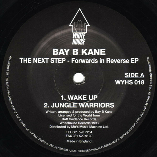 Baby B Kane - The Next Step - Forwards In Reverse EP