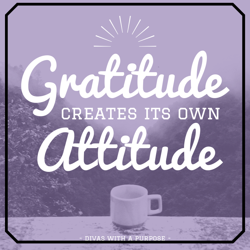 Thankful Thursday Quote: Gratitude creates its own attitude. #gratitude #quotes #ThankfulThursday
