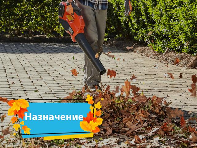 Назначение садового пылесоса