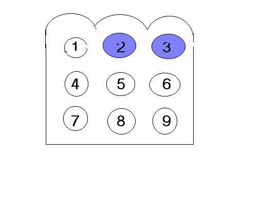 109507230-318535695845097-71224435141352