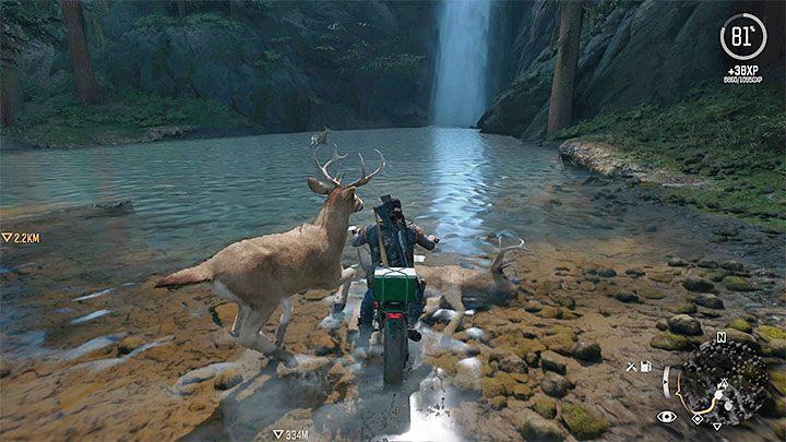 Как атаковать во время езды на мотоцикле в Days Gone?