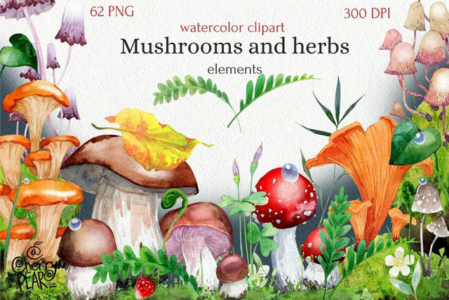 Mushrooms-and-herbs.jpg