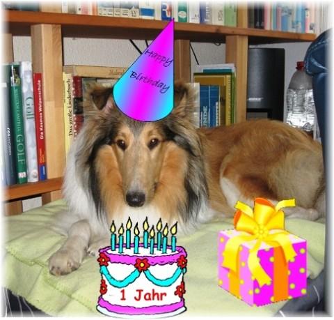 Leo-1-Geburtstag-Mittlere-Webansicht