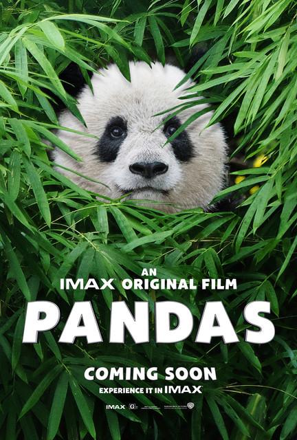 Pandas 2018 UHD BluRay 2160p DTS-HD MA 5.1 HEVC REMUX-FraMeSToR |  27 GB |