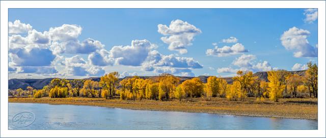 oldman-valley-trees-BB-PSEM-CAS07874.jpg