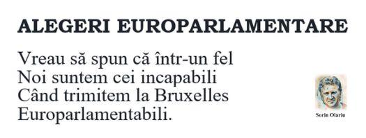 Alegeri-Europarlamentare-rezolutie-mica