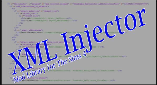 XML INJECTOR