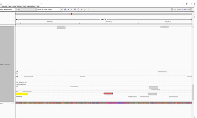 chr7-target-IGV-screenshot