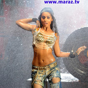 shriya-pista-hd419