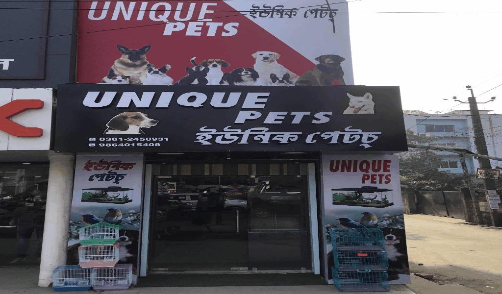 Anecdote Pets Store