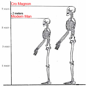 por que se dice que los rubios son mas altos que los morenos? - Página 2 000-Altura-Cro-Magnon