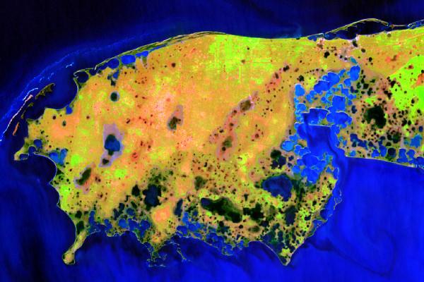 Вигляд Ягорлицького півострова на супутниковому знімку Sentinel-2 від 20 квітня 2018 р. (комбінація каналів 12-8-2)