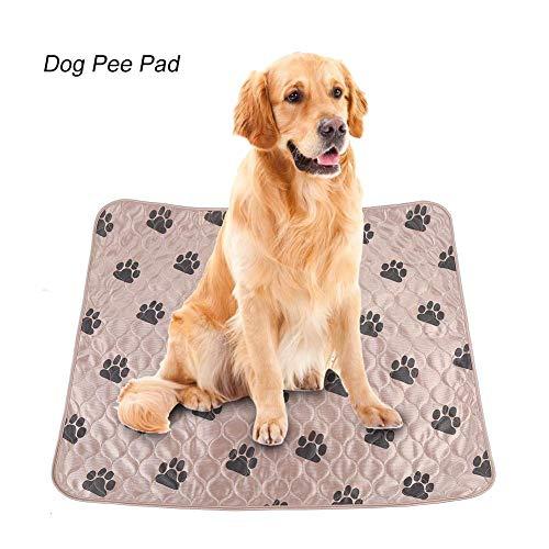 Delaman Dog Pee Pad Holder Lavable Perro Orina de Cama Orina Impermeable Alfombra Reutilizable para Mascotas Perros Gatos (Size : L)