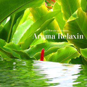 Compilations incluant des chansons de Libera Aroma-Relaxin-300