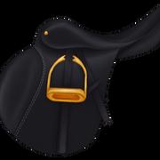 Ysatula musta