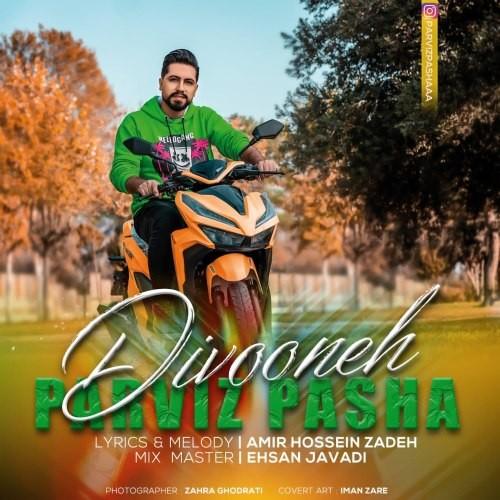 دانلود آهنگ جدید پرویز پاشا به نام دیوونه