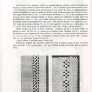 72-lpp