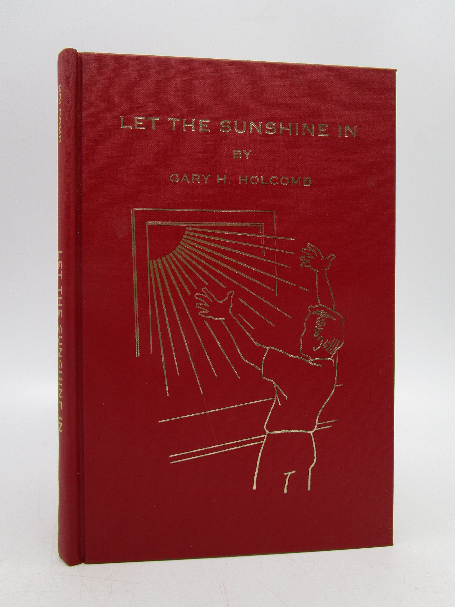 Image for Let the Sunshine In (First Edition)