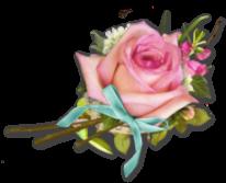rosenbow.png