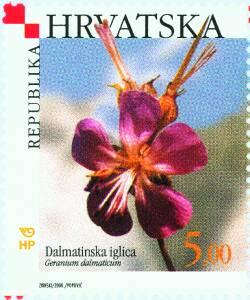 2000. year HRVATSKA-FLORA-DALMATINSKA-IGLICA