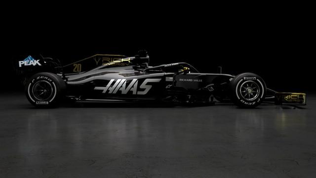 Haas-2019c-jpg-large.jpg