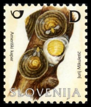 Slovenia stamps FRUIT-INSECT-2