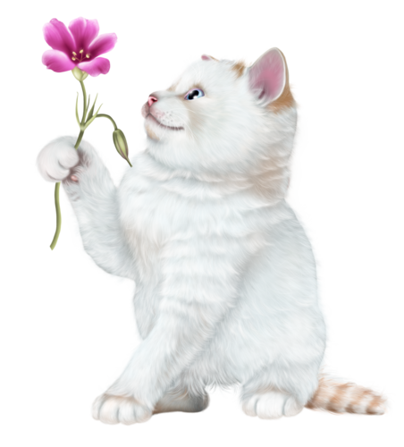 baby-with-a-kitten-png21.png