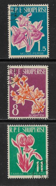 Albanien 633