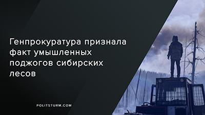 Генпрокуратура признала факт умышленных поджогов сибирских лесов