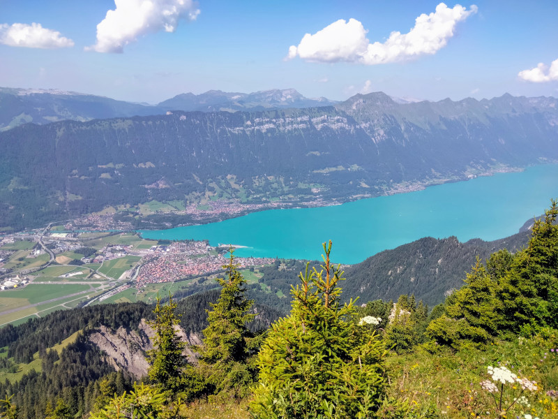 Lake Brienz, view from Tuba view point