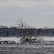 13-Nov-2019-Icy-Shore-smaller-175