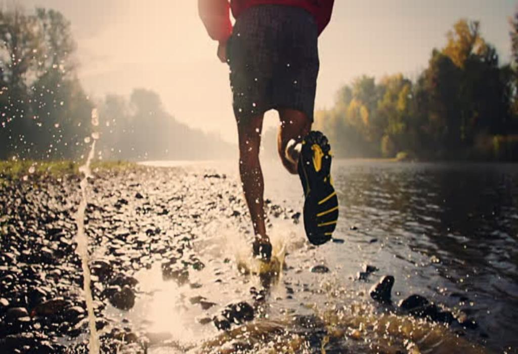 Health & Fitness Body Journal