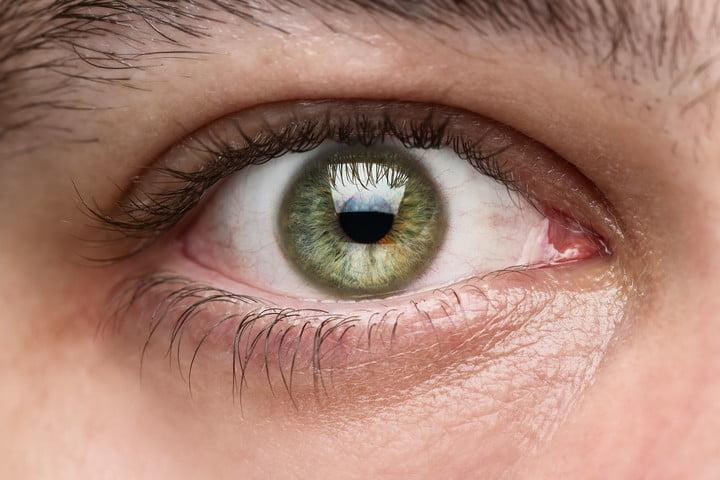 EyeQ Reading Training