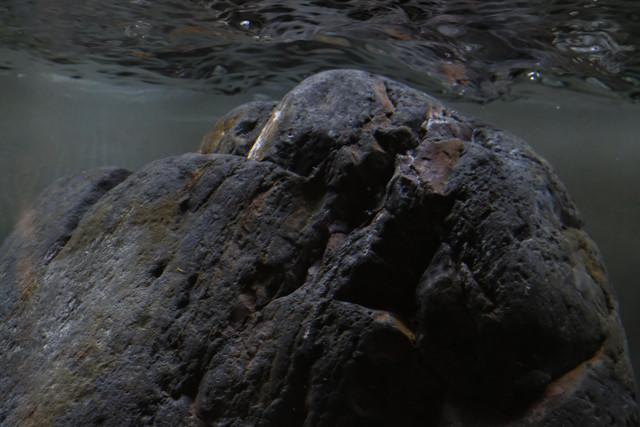 200x30x30 bout de ruisseau DSCF0305