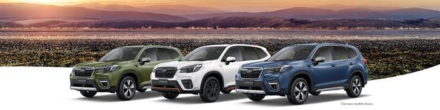City Subaru Forester