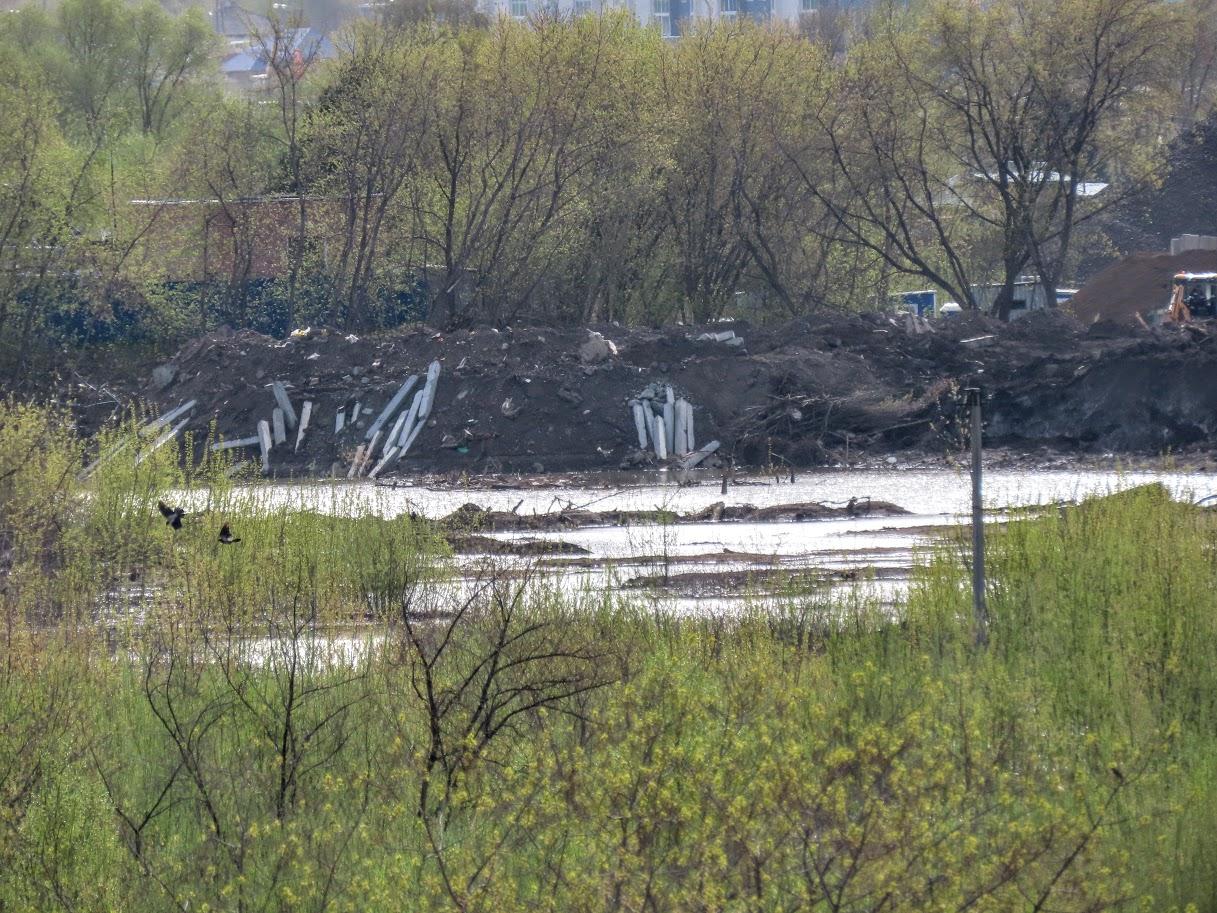 Уровень воды в Томи снова повысился IMG-7754