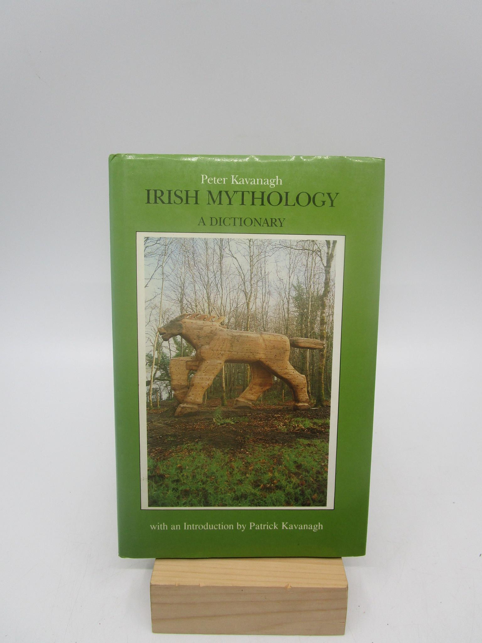 Image for Irish Mythology a Dictionary