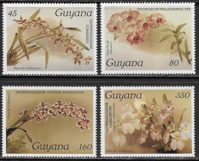 O Guyana 1643